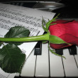 Rose piano music - Stock Photo