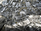Texture charcoal (textural background) — Stock Photo