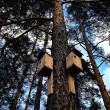 Birdhouses... — Stock Photo