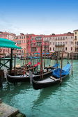Venice: Traditional gondolas in Canal Grande, near Rialto. — Foto Stock