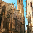Barcelona: Gothic Cathedral of Santa Eulalia in Barri Gotic dist — Stock Photo