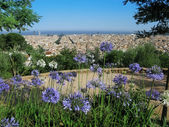 Barcelona: view of the city from the top of the hill at Parc Guell, the famous and beautiful park designed by Antoni Gaudi, one of the highlights of the city — Stock Photo