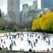 NEW YORK - DECEMBER 3: Ice skaters having fun in Central Park, a — Stock Photo #40300731