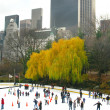 NEW YORK - DECEMBER 3: Ice skaters having fun in Central Park, a — Stock Photo #40300921