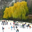 NEW YORK - DECEMBER 3: Ice skaters having fun in Central Park, a — Stock Photo #40301063