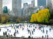 NEW YORK - DECEMBER 3: Ice skaters having fun in Central Park, a — Stock Photo
