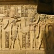 Temple of Kom Ombo, Egypt: the Pharaoh and Sobek - the crocodile — Stock Photo