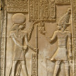 Temple of Kom Ombo, Egypt: the Pharaoh and god Horus — Stock Photo