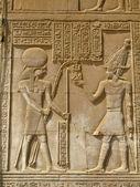 Temple of Kom Ombo, Egypt: the Pharaoh and god Horus — Stock Photo