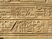 Temple of Kom Ombo, Egypt: ancient egyptian hyeroglyphs — Stock Photo