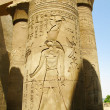Temple of Kom Ombo, Egypt: column with relief of Horus, the anci — Stock Photo #44940395