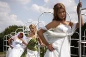 Brides and bridegroom in summer garden — Stock Photo