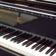 Piano — Stock Photo #30720785
