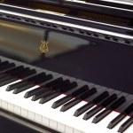 Piano — Stock Photo #30720785