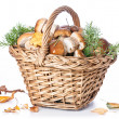 Boletus mushrooms in wicker basket - Stock Photo
