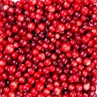 Red ripe cranberries background — Stock Photo #24481131