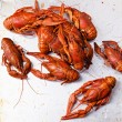 Boiled red lobsters - Stock Photo