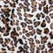 Stock Photo: Leopard skin Pattern texture