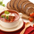 National red borsch with herbs and spice — Stock Photo #24481431