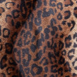 Leopard skin Pattern texture - Stock Photo