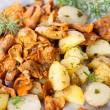 Fried chanterelles with potatoes and onion in on plate - Stock Photo