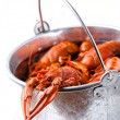 Boiled lobsters in bucket on white background - Stock Photo