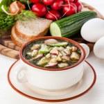 Okroshka - Russian kvass Cold Soup with Vegetables — Stock Photo #24482411
