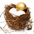 Easter eggs in nest — Stock Photo #24483273