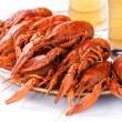 Red lobsters with beer - Stock Photo