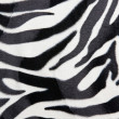 Zebra skin Pattern texture - Stock Photo