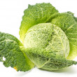 Fresh savoy cabbage  — Stock Photo