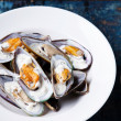 Prepared mussels on white plate - Stock Photo
