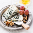 Dor Blue Cheese with honey, nuts and grapes on plate — Stock Photo #24483973