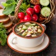 Okroshka - Russian kvass Cold Soup with Vegetables — Stock Photo #24484177