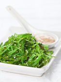 Seaweed Salad with walnut sauce — Stock Photo