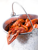 Boiled lobsters in bucket on white background — Stock Photo
