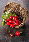 Fresh garden radish in wicker basket — Stock Photo
