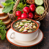 Okroshka - Russian kvass Cold Soup with Vegetables — Stock Photo