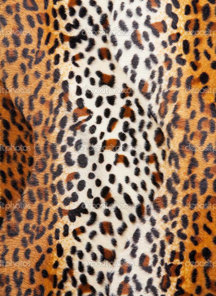 Cheetah Skin Texture Cheetah Skin Pattern Texture
