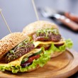 Two burgers with meat and greens — Stock Photo #28336115
