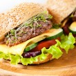 Two burgers with meat and greens — Stock Photo #30022711
