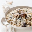 Wild mushrooms risotto with parsley and parmesan — Stock fotografie