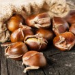 Roasted chestnuts in burlap bag — Lizenzfreies Foto
