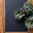 Stock Photo: Vintage slate chalk board with Fir branch