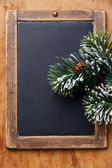 Vintage slate chalk board with Fir branch — Stock Photo