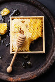 Honeycomb with wooden honey dipper — Stock Photo
