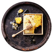 Honeycomb with honey dipper — Stock Photo
