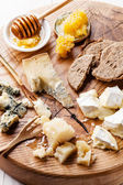 Cheese appetizer — Stock Photo
