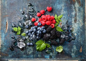 Mix of fresh berries with ice — Stock Photo