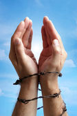 Hands tied with barbed wire — Stock Photo